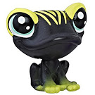 12-S1-Quimby-Froglegs-Frog-LPS-1